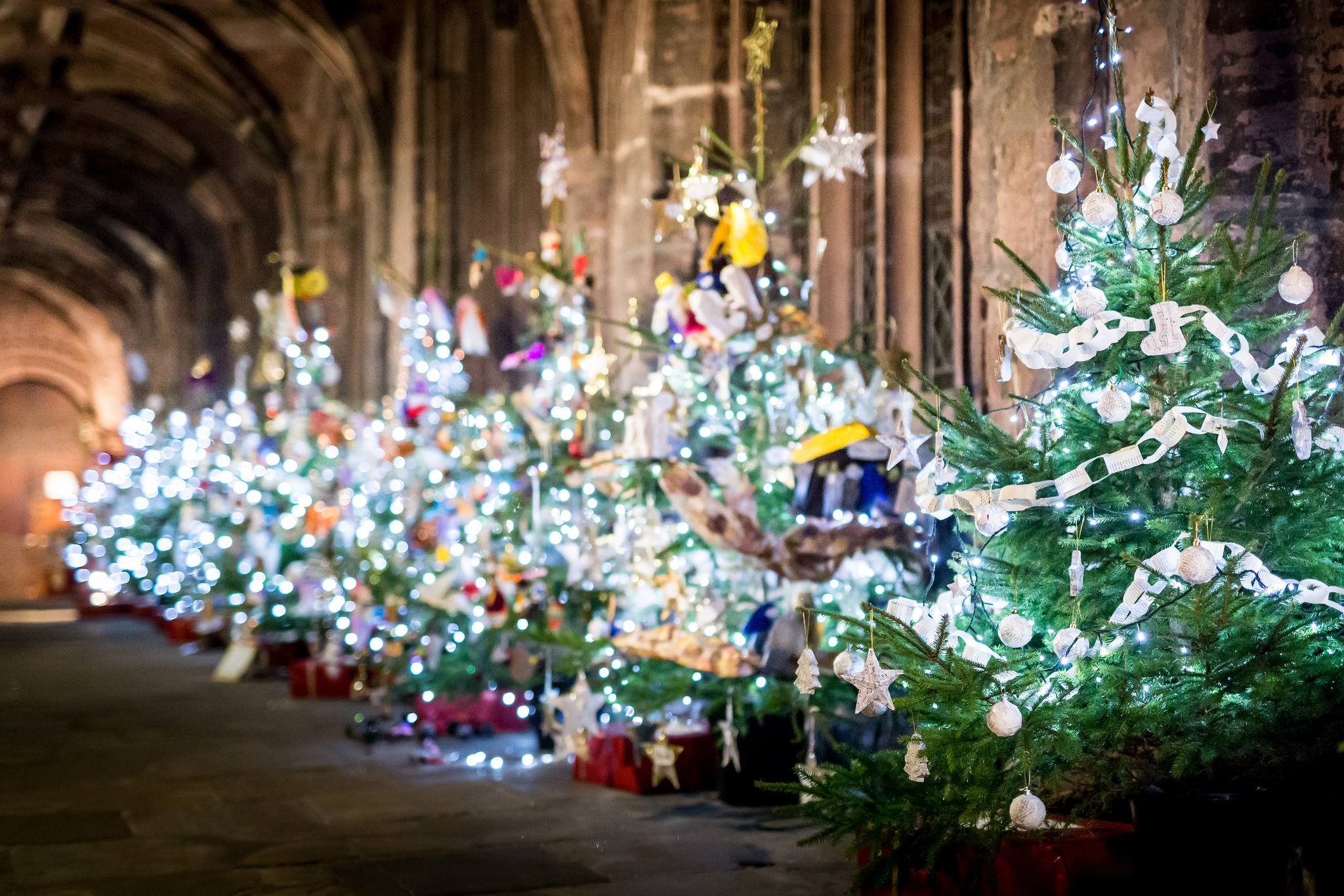 Chester Cathedral Christmas Tree Festival Chester Lifestyle